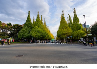 TOKYO, JAPAN - NOVEMBER 16, 2018: Day scene of crowded people at Ginkgo avenue, Tokyo prefecture, Japan