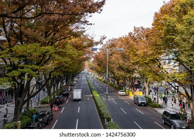 TOKYO, JAPAN - NOVEMBER 18, 2018: Day scene of Omotesando road with autumn leaves at Tokyo prefecture, Japan