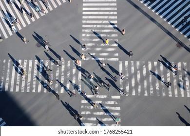 TOKYO, JAPAN - November 21, 2019: Overhead view of people walking across the busy Sukiyabashi scramble crossing in Ginza. Some motion blur.