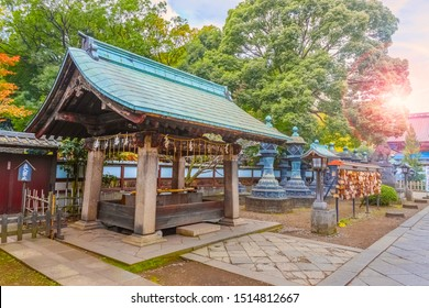 TOKYO, JAPAN - NOVEMBER 25 2013: Toshogu Shrine built in 1616, one of numerous shrines across the country that dedicated to Tokugawa Ieyasu, the founder of the Edo Shogunate government