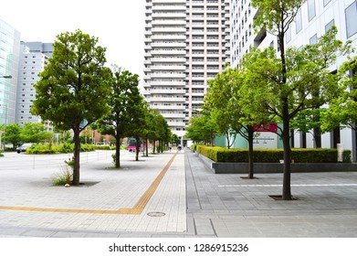 Tokyo, Japan / Oct 15, 2018: View of walking road with trees on two sides and modern building in Shinagawa, Tokyo, Japan.