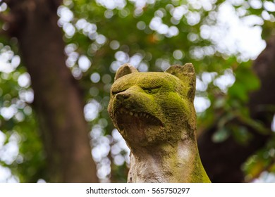 Tokyo, Japan - October 22, 2016: Head of fox statue of Kaichu inari Shrine at Shin Okubo in Shinjuku district, the shrine is the place to worship in downtown of Tokyo, Japan.