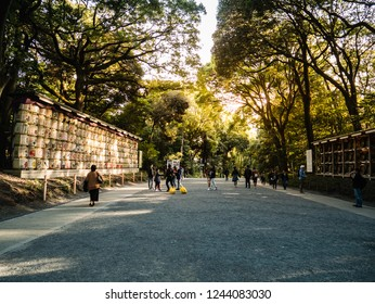 Tokyo, Japan - October 31, 2018: Yoyogi park in Harajuku district, Tokyo, Japan.