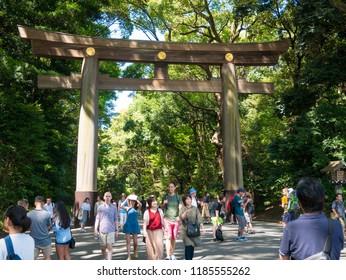 Tokyo, Japan. September 8, 2018. People walking in Yoyogi park in Harajuku district.