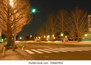 Tokyo Japan,December 31, 2016 :  Illumination on trees in park near Tokyo station on New year eve. Tokyo, Japan.