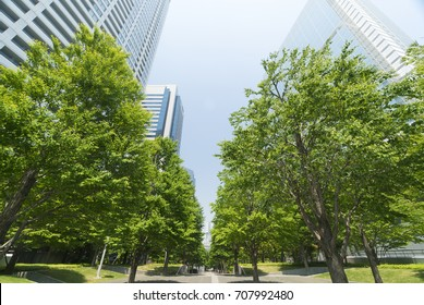 Tokyo landscape Shinagawa high-rise building city spring fresh green