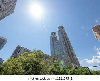 Tokyo Metropolitan Government Building and Trees
