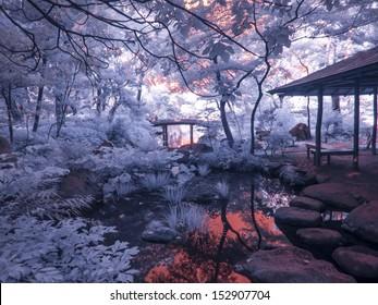 Tokyo Park. Japan. Enhanced Infrared.