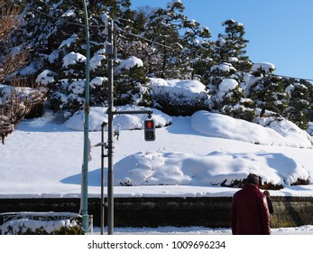 Tokyo pedestrians stop and take toll after a rare snow storm covered the city. An abnormally cold winter in Tokyo, with  heavy snow put a stop to daily life and created a sudden winter wonderland
