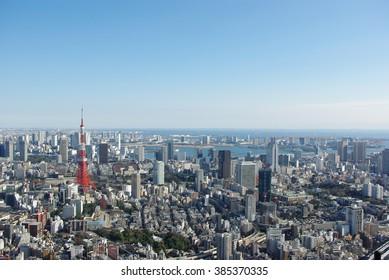 Tokyo skyline in the daytime