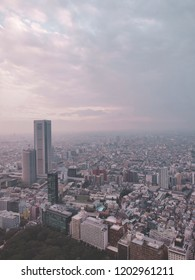 tokyo skyline fading into the cloudy day
