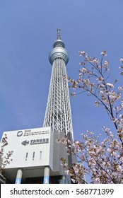 TOKYO SKYTREE, Japan. April 12 2016: Entered Guinness World Records as the world's tallest free-standing broadcasting tower (634m) in Nov 17, 2011.
