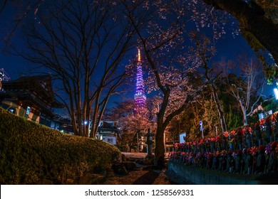 Tokyo Tower and cherry blossoms and the Jizo