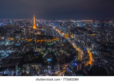 Tokyo Tower and urban city skyline at cloudy night, view from high level building
