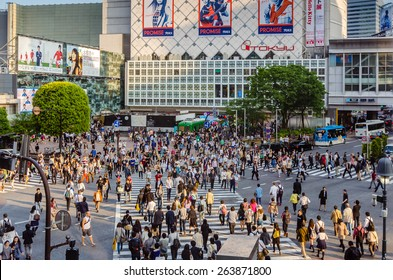 TOKYO,JAPAN -1 May 2014 :Shibuya is famous for its scramble crossing. It stops vehicles in all directions to allow pedestrians to inundate the entire intersection.