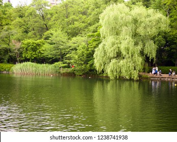 Tokyo,Japan ,May,14, 2017:This is Inokashira Park in Kichijoji. It is a park where nature is popular.