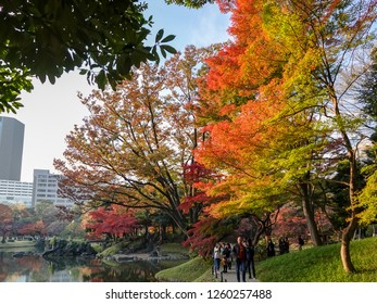 TOKYO,JAPAN-NOV 30: Koishikawa Korakuen Gardens facade on November 30,2018 in Tokyo, Japan.It is designed as the Special Place of Scenic Beauty in Tokyo, a garden full of Chinese tastes and flavor.