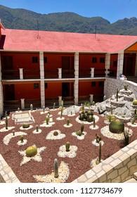 TOLANTONGO, MEXICO - May 30, 2018: Various species of cactus plants grow in a neatly arranged garden in Hidalgo State.