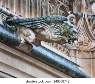 TOLEDO - MARCH 8: Detail of animal as gothic spoutler in rain from atrium of Monasterio de San Juan de los Reyes on March 8, 2013 in Toledo, Spain.