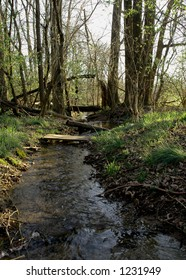 Tom Sawyer Nature Creek