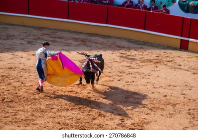 """TOMAR, PORTUGAL - OCTOBER 24: Cavaleiro fight with the bull and stabbing """"bandarilha"""" to the bull in portuguese style bullfighting in Tomar on October 24, 2010"""