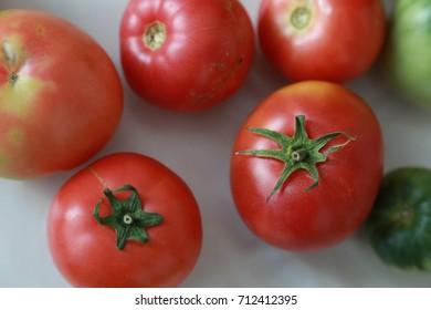tomato fresh from nature