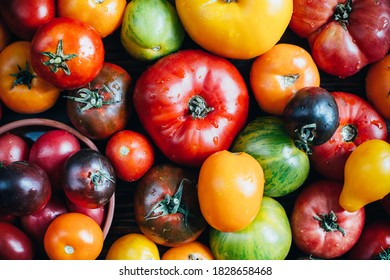 tomato harvest of different varieties close-up top view