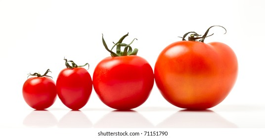 Tomato line up of four different varieties isolated on white.