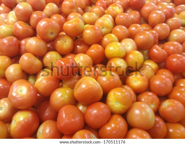 Tomato in market and ready for sell