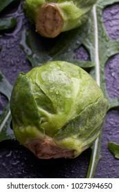 tomato salad cabbage vegetables