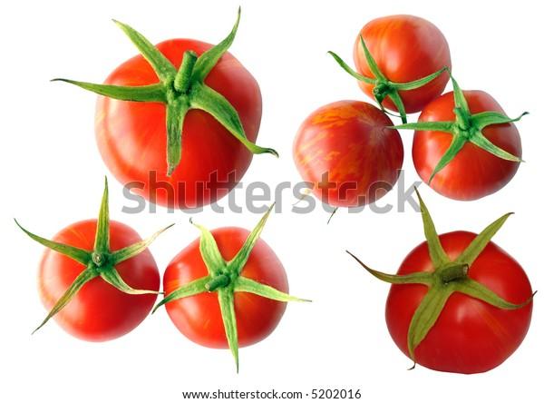 tomato (saved path)