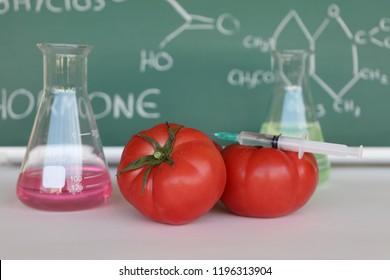 Tomato test in laboratory