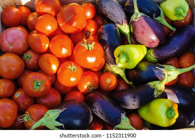 Tomatoes, aubergines and peppers in the garden, sunset, august