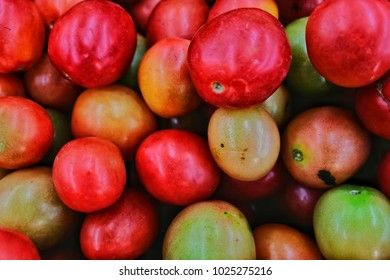 Red? tomatoes with close up Concept.