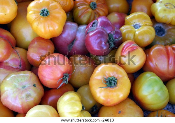 tomatoes lined up at the farmers market for sale