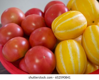 Tomatoes and melons