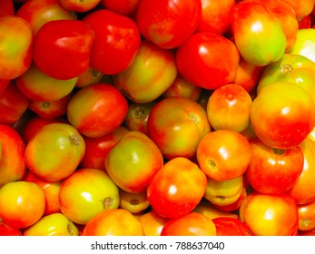 Tomatoes - Most common Vegetable. Solanaceae Nightshade.