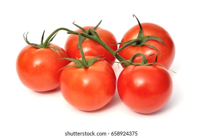 Tomatoes on branches isolated