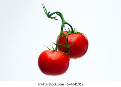 Tomatoes red on a green branch in streams of water, white background, studio light