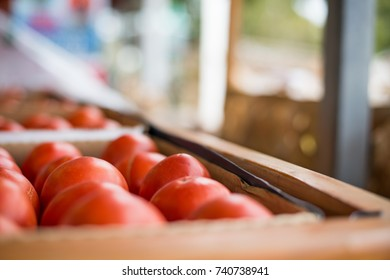 Tomatoes for sale at farmer's market