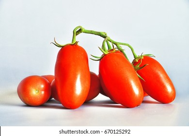 Tomatoes San Marzano, Campania, italy  Group of tomatoes San Marzano, bunch cluster, still life on gray-blue background