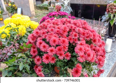 Tombstone decorated with bunch of chrysanthemum flowers