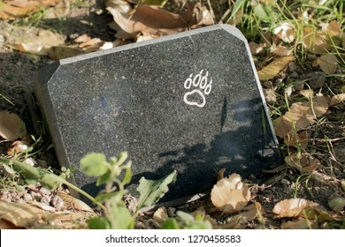 tombstone on pet's grave