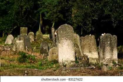 Tombstones - Jewish cemetery in Otwock (Karczew-Anielin), Masovian Voivodeship, Poland.