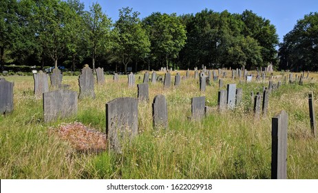 tombstones old cemetery in high grass