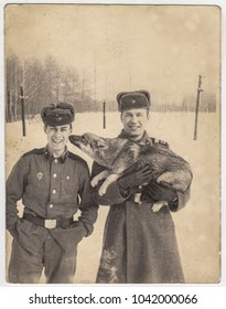 TOMSK, USSR - CIRCA 1970: Portrait  two young smiling guys dressed  soldier's uniform with a dog German shepherd licking male face at winter day. Man, boy, pet, snow, officer, service, army, Siberia