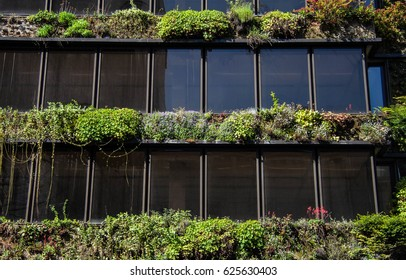 Toned windws of an office building in Brussels, Belgium, decorated with green plants