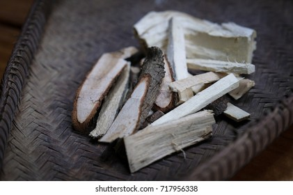 Tongkat Ali (Eurycoma longifolia jack) Medicinal herbs Malaysia