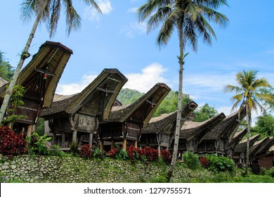 Tongkonan in Tana Toraja, South Sulawesi
