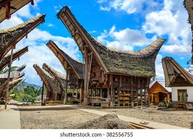 Tongkonan traditional houses in Palava village. Tana Toraja, Sulawesi. Indonesia